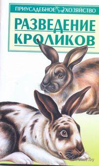 Разведение кроликов. Александр Зипер