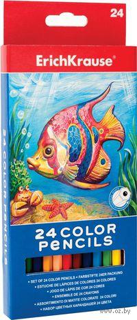 Цветные карандаши Erich Krause 32880(24 цвета)