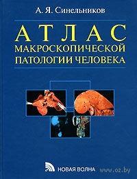 Атлас макроскопической патологии человека. Александр Синельников