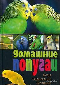 Домашние попугаи. Виды, содержание, обучение. В. Казакова