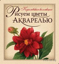 Рисуем цветы акварелью (подарочное издание + набор для рисования). Наталья Иванова