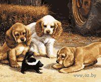 """Картина по номерам """"Любопытные щенки"""" (400x500 мм; арт. MG288)"""
