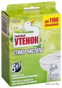 """Стикер для унитаза """"Цитрус"""" (6 шт.)"""