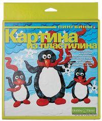"""Картина из пластилина """"Пингвины"""""""