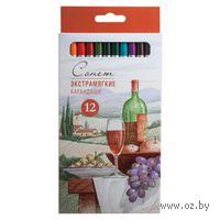 """Экстрамягкие цветные карандаши """"Сонет"""" (12 цветов)"""