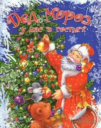 Дед Мороз у нас в гостях. Раскраска с наклейками. В. Коцюруба