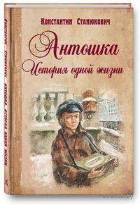 Антошка. История одной жизни. Константин Станюкович