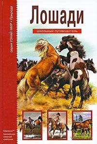 Лошади. Сергей Афонькин