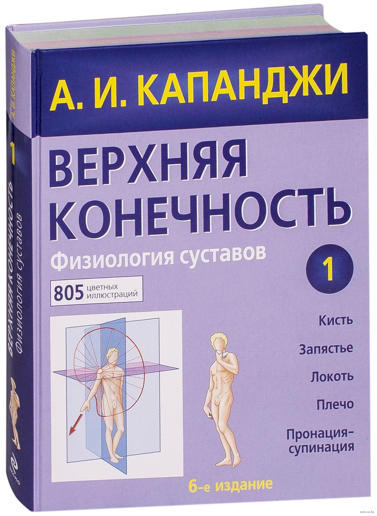 Верхняя конечность физиология суставов эффективная мазь от артроза коленного сустава