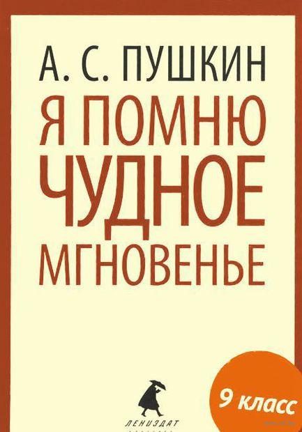 Я помню чудное мгновенье. Александр Пушкин