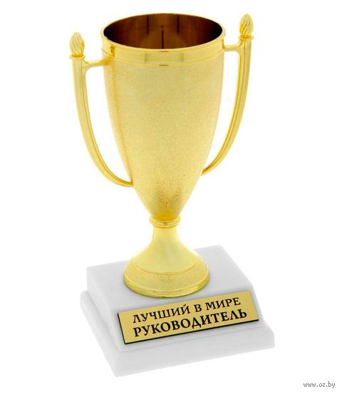 """Кубок пластмассовый """"Лучший руководитель в мире"""" (9,8х7,8х17,2 см)"""