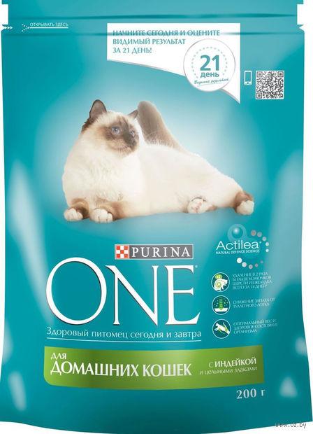 Корм сухой для домашних кошек (200 г; индейка и цельные злаки) — фото, картинка