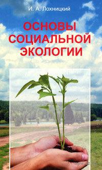 Основы социальной экологии — фото, картинка