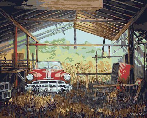 """Картина по номерам """"Старье или сокровище"""" (410х510 мм; арт. PLD-21774)"""