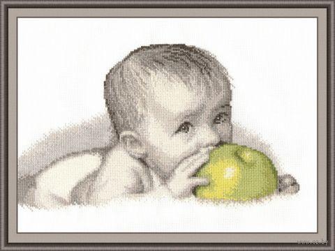 """Вышивка крестом """"Малыш с яблоком"""" (270x280 мм) — фото, картинка"""