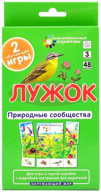 Лужок. Природные сообщества. Набор карточек. Е. Гончарова