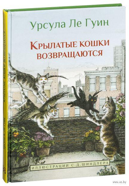 Крылатые кошки возвращаются — фото, картинка
