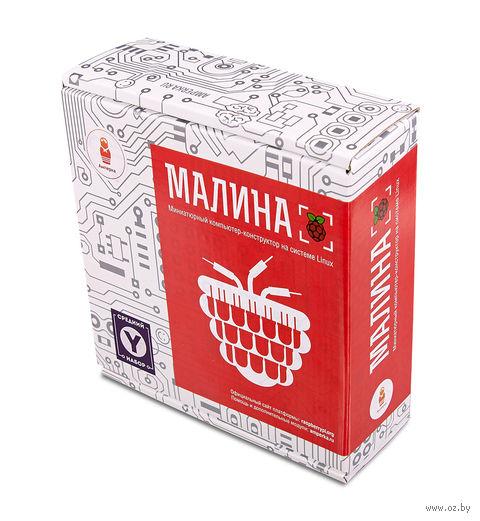 """Электронный конструктор """"Малина Y"""" — фото, картинка"""