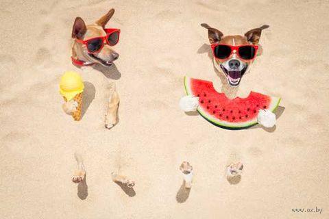 """Объемная аппликация """"Пляж"""" — фото, картинка"""