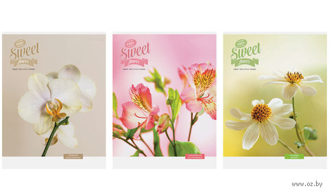 "Тетрадь А4 в клетку 96 листов ""Цветы. Sweet flower"""