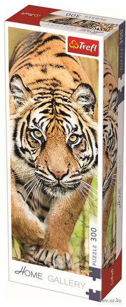 "Пазл ""Затаившийся тигр"" (300 элементов) — фото, картинка"