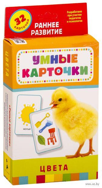 Развивающие карточки. Цвета (набор из 32 карточек) — фото, картинка