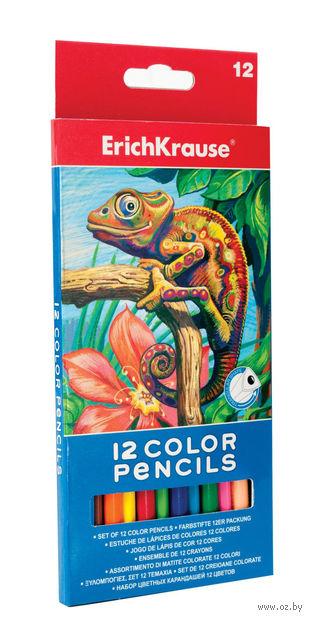 Набор карандашей цветных (12 цветов) — фото, картинка