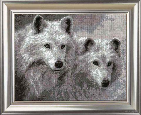 "Вышивка крестом ""Белые волки"" (290х230 мм) — фото, картинка"