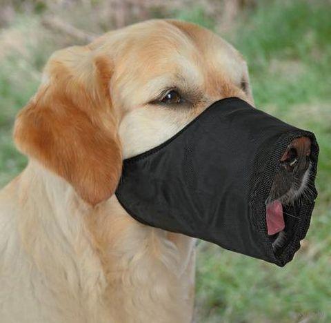 Намордник для собак нейлоновый регулируемый (размер S-M; 20 см/15-36 см)