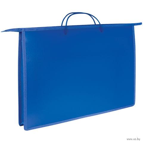 Папка для чертежей и рисунков А3 (синяя)