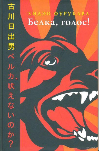 Белка, голос!. Хидэо Фурукава