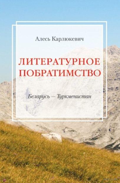 Литературное побратимство. Беларусь - Туркменистан — фото, картинка