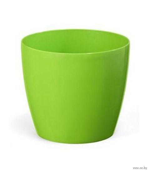 """Кашпо """"Magnolia"""" (10 см; зеленое) — фото, картинка"""