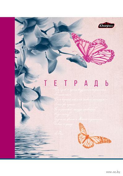 """Тетрадь в клетку """"Бабочки"""" 96 листов"""