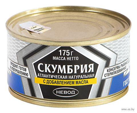 """Скумбрия консервированная """"Невод. С добавлением масла"""" (175 г) — фото, картинка"""