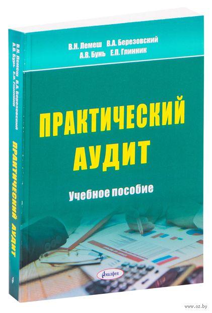 Практический аудит. Учебное пособие — фото, картинка