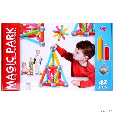 """Конструктор магнитный """"Magic Park"""" (42 детали; арт. DV-T-603) — фото, картинка"""
