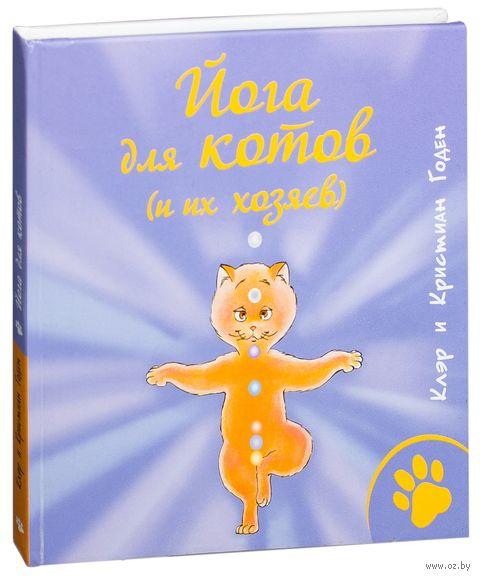 Йога для котов — фото, картинка