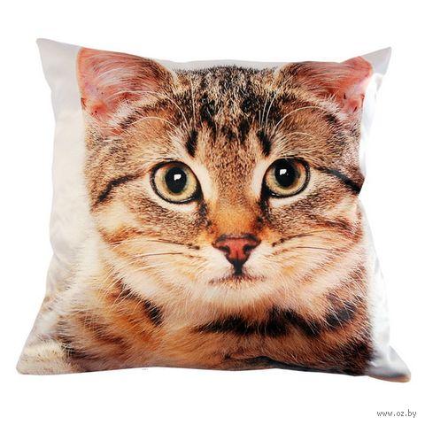 """Подушка """"Кошки"""" (35х35 см; арт. A0186) — фото, картинка"""