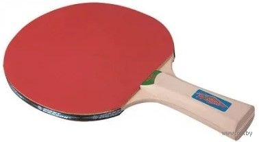 Ракетка для настольного тенниса ST12201 (4 звезды) — фото, картинка