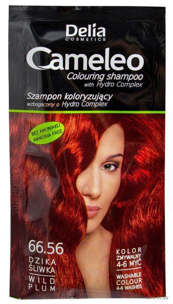 Оттеночный шампунь для волос (тон: 66.56; 40 мл)
