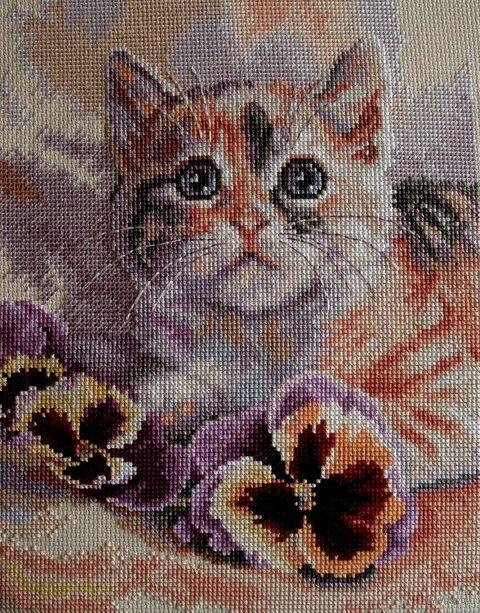 """Вышивка крестом """"Кот с анютиными глазками"""" (200x250 мм) — фото, картинка"""