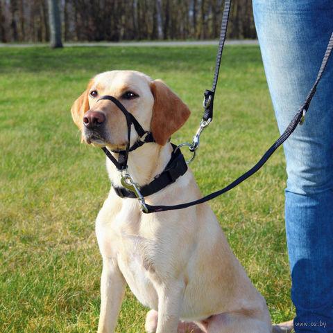"""Шлея тренировочная для собак """"Top Trainer Training Harness"""" (размер L; 50-57 см; черный)"""