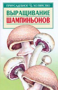 Выращивание шампиньонов. Александр Морозов