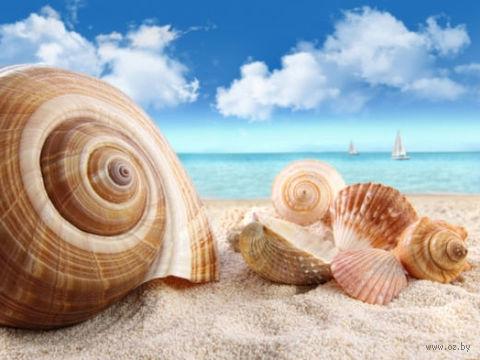 "Алмазная вышивка-мозаика ""Ракушки на берегу"" (400х300 мм) — фото, картинка"
