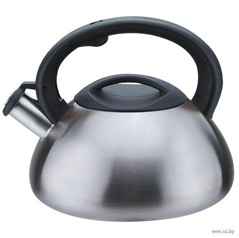 Чайник металлический со свистком (3 л; арт. Mr-1306) — фото, картинка