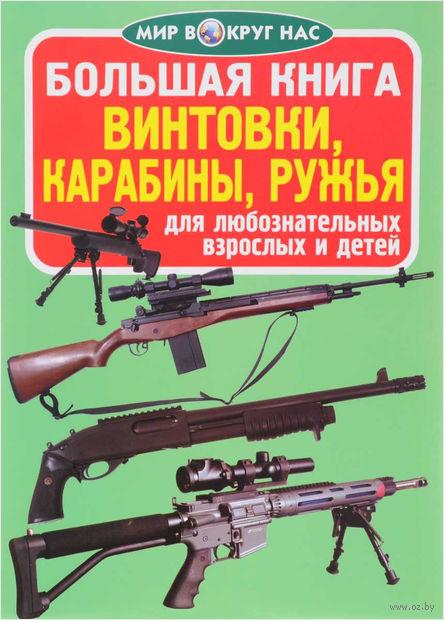 Большая книга. Винтовки, карабины, ружья — фото, картинка