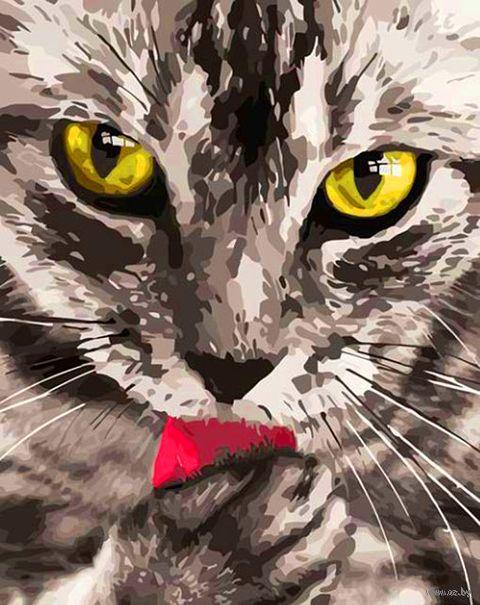 """Картина по номерам """"Кот"""" (400х500 мм) — фото, картинка"""