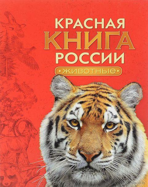 Красная книга России. Животные. Александр Тихонов