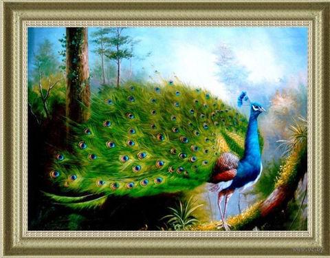 """Алмазная вышивка-мозаика """"Гордый павлин"""" (650х430 мм) — фото, картинка"""